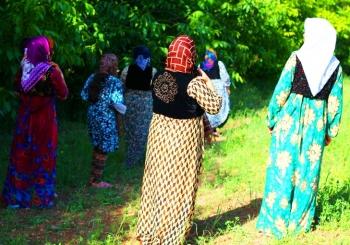 سفرنامه کردستان | بهشت پنهان