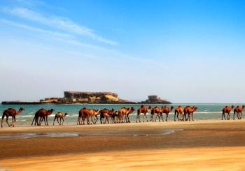 جزایر ناز | عجایب هفتگانه قشم